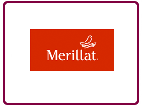 Merillat Kitchens